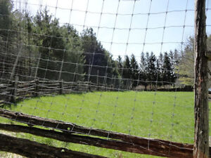 1/2 Acre 12' Tall Fenced Area for Rent in Formosa -Monthly Rent Kitchener / Waterloo Kitchener Area image 10