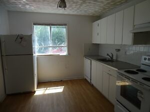 ROOMS FOR RENT IN GREAT DOWNTOWN LOCATION - 31-A Chatham St Kingston Kingston Area image 3