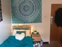 Single bed, Spacious, Student accommodation, in the HEART of Leicester - ONLY £83.50 a week!