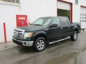2014 Ford F-150 XLT~ E-Locker ~ Backup cam ~ 5.0L ~ XTR~$17,999