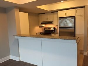 AVAILABLE NOW !!  - Fantastic Modern 1 BR in Downtown Oshawa!!