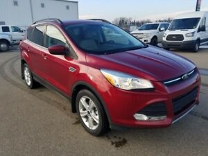 2014 Ford Escape SE (Backup Cam, Heated Seats, Bluetooth)