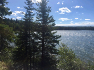 Cabin Rental Wanted - 4 to 6 nights
