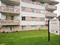 Belgrove Apartments - 1505 Belcher Avenue, 1-bedrooms