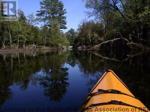 Paddling adventure cottage for sale Kawartha Lakes Peterborough Area image 3