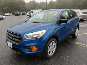 Beautiful in blue ~ 2017 Ford Escape S