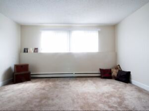 Charming & Spacious One Bedroom Apartment Available!
