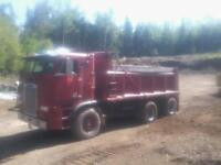 INCREDIBLE CONDITION FREIGHTLINER