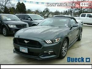 2015 Ford Mustang GT Premium (Just 17,000 kms) Text 778.927.8077