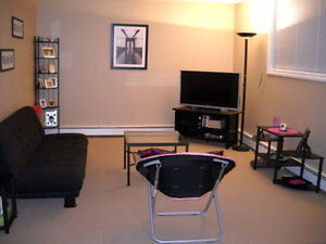 Centrally located renovated furnished 2 BR condo May1-Aug end