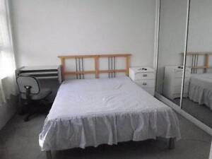 Dee Why master room for single tidy lady or under 28yo male Dee Why Manly Area Preview
