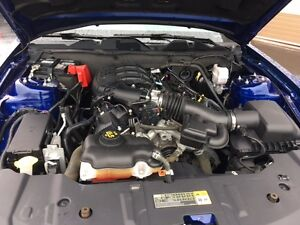 2013 Ford Mustang V6 Windsor Region Ontario image 19
