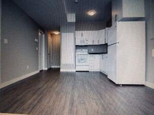 2 bedrooms brand new basement suite for rent in Evergreen