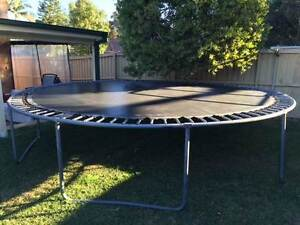 16 Ft Trampoline for Sale Curl Curl Manly Area Preview