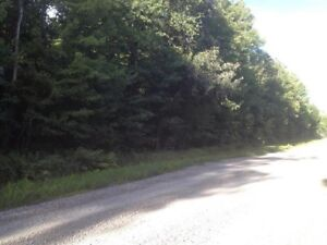 Land for sale - between Luskville and Quyon
