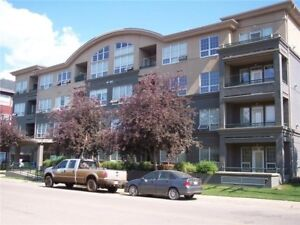 1 bedroom + den furnished condo downtown