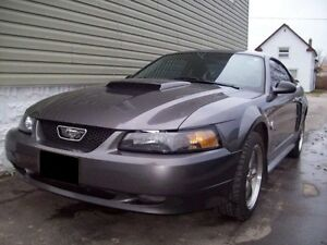 2004 Ford Mustang GT / Swap - Trade London Ontario image 3
