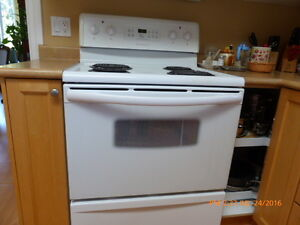 Kitchen Appliance – fridge, stove, dishwasher, microwave & hood