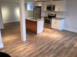 Luxurious Bachelor/1 bedroom steps from downtown