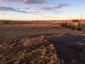 1.14 Acre Lot For Sale in Deer Run Estates Picture Butte