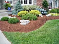 Landscaping: Mulching, Planting, Tree removal, we do it all !