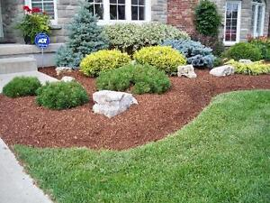 Landscaping: Mulching, Planting, Tree removal, we do it all ! Cambridge Kitchener Area image 1