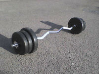 55 lb 25 kg Olympic Bar + Dumbbell & Barbell Weights