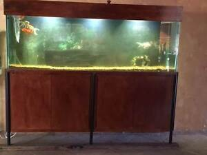 Complete fish tank 6ft x 1.5ft with custom stand Mullaloo Joondalup Area Preview