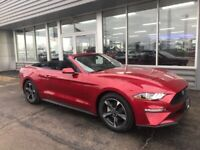 Miniature 11 Voiture Américaine d'occasion Ford Mustang 2020