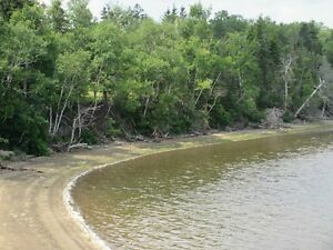 1 Acre off Hierlihy Rd. WATERFRONT!