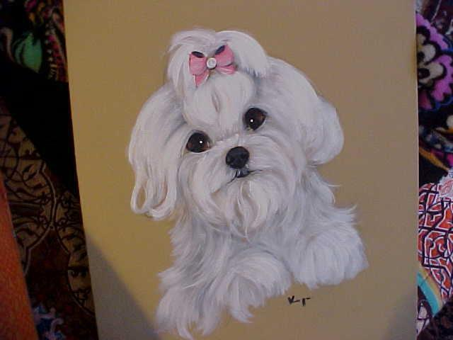 FIND YOUR MALTESE ORIGINAL PAINTING