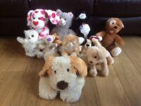 12 Cuddly Soft Toys