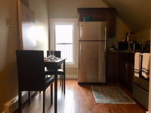 NEWLY RENOVATED FULLY FURNISHED STUDIO SUITE CLOSE TO DOWNTOWN