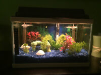 2 Fish tanks, Metal Stand and accessories for sale.
