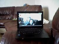 toshiba laptop satelite pro windows 8.1