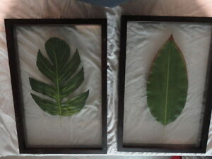 set of 2 -  framed tropical leaf art pieces London Ontario image 1