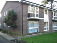 Two bed flat in Guildford available now