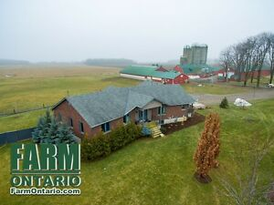 Freestall Dairy w Productive Land + Open Concept Home in Mossley