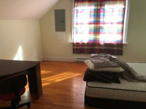 ACROSS DALHOUSIE   ROOMS ARE AVAILABLE