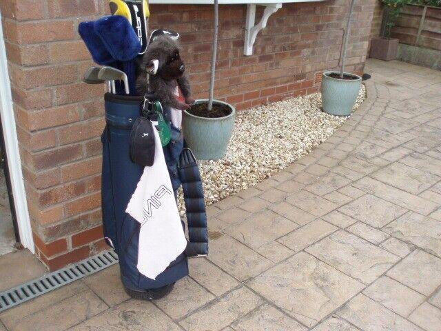 Left Hand set of Golf Clubs inclusive of Bag, Trolley, Umbrella etc all as  detailed  | in High Lane, Manchester | Gumtree