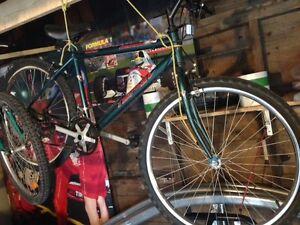 2 Bikes almost free.