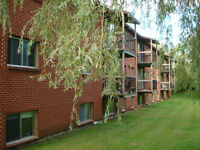 *** WOLFVILLE *** Quiet Apartments available!
