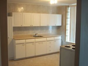 Large 1 Bedroom Apt. NO smoking. Available April 1st