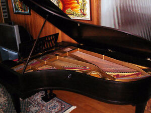 1889 C Bechstein Grand Piano Restored & Refinished West Island Greater Montréal image 3