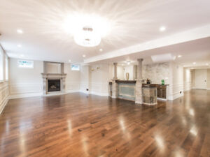 Walkout basement apartment for rent in Nobleton