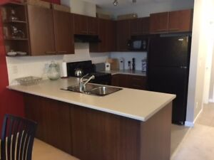 Completely furnished beautiful 2-bedroom,2-bath condo
