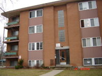 new reno clean apt only 450/room all inclusive