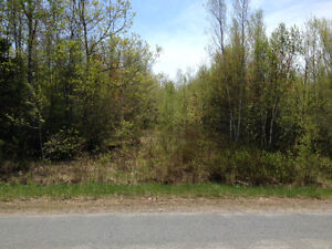 Two 5 Acre Lots for Sale in Upper Falmouth, septic approved.