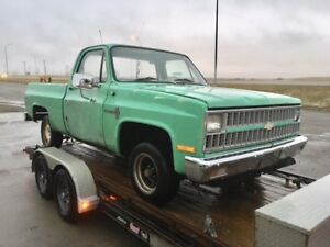 LOOK! $4500.00! SHORT BOX! ORIGINAL SURVIVOR 82 CHEV! UNTOUCHED!