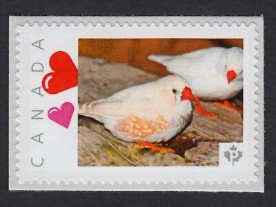 ZEBRA FINCH MUTATION = BIRD =Picture Postage stamp MNH Canada 2015 [p15/12bk4/4]